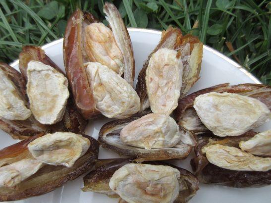 Kakaobohnene mit Fruchtfleisch