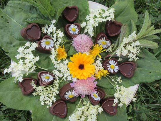 rohe Pralinen mit Blumen