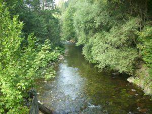 Das Leben ist wie ein Fluss